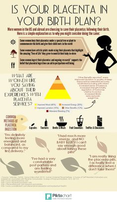 Placenta Encapsulation | Piktochart Infographic Editor
