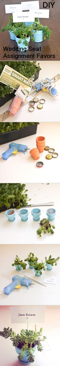 Save your bottle caps to make these cute planters as favors or gifts for friends!!