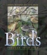 Birds: Through Irish Eyes by Anthony McGeehan with Julian Wyllie - The Collins Press: Irish Book Publisher Buy Birds, Irish Eyes, Exciting News, Book Publishing, Book Review, New Books, The Book, Wildlife, January 21