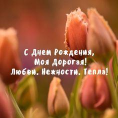 С Днем Рождения,Моя Дорогая! Любви. Нежности. Тепла! Открытка с тюльпанами для девушки — скачать Отправьте эту нежную, поздравительную открытку с пожеланиями любви и нежности дорогому вам человеку. Скачать открытку бесплатно …
