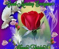 Rose Dove Good Morning Everyone