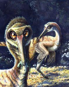 Buitreraptor gonzalezoum by Jorge Antonio Gonzalez