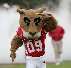 Shasta, University of Houston Cougars.