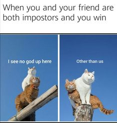 25 Funny Among Us Memes for Your Favorite Imposter #amongus #gamingmemes #amongusmemes #amongusgame #videogames