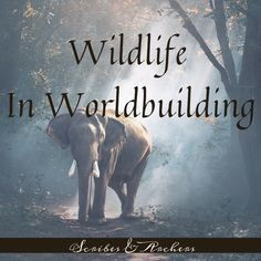 Fun fact: I used to HATE developing wildlife for worldbuilding. It fact, I loathed it Book Writing Tips, Writing Quotes, Writing Resources, Writing Help, Writing Prompts, Writing Ideas, Science Fiction, Fiction Writing, Writing Fantasy