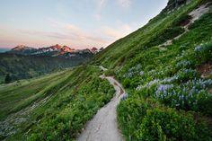 Een kronkelige weg die ik weet niet waar naartoe voert, langs een heuvelrug, schuinweg, nieuwsgierig naar wat er verder ligt