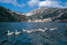 Nanital Hill Tour is always loved by the tourists from all over the world. People love to be in the town located amidst the gorgeous hills and lovely River Naini for the revival of their mind and body both. For their convenience, Toshali Holidays offers Nanital Tour Packages in a wide range and you can make your own choice as per your requirement. Nainital Tourism fills you with a very pleasurable experience in the lovely lap of the nature.