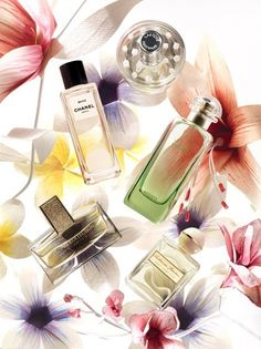 Fragrance Cosmetics Styling