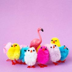 Happy Easter! #aflamingoaday #happyeaster #flamingo #Easter #easterchick #chick #purple #happycolors #spring