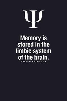 thepsychmind: Fun Psychology facts here! – Psychology Facts thepsychmind: Fun Psychology facts here! Psychology Says, Psychology Fun Facts, Psychology Quotes, Abnormal Psychology, Fact Quotes, Life Quotes, Psych Quotes, Brainy Quotes, Psycho Facts