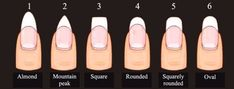 4 Nail Shapes To Manicure Nail Shapes Squoval, Acrylic Nail Shapes, Fall Acrylic Nails, Nails Shape, Shapes Of Nails, Squoval Acrylic Nails, Stiletto Nails, Art Rose, Nagel Gel