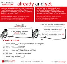 Wednesday Grammar | Zebra Academy | Already and Yet | Native Speaker | Business English | English Grammar | Warszawa