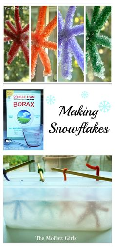 Fun Winter Science- Making snowflakes with Borax. This is such magical activity!
