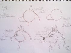 how to draw wolves   how to draw a cartoon wolf by AngelfyreDarkWolf