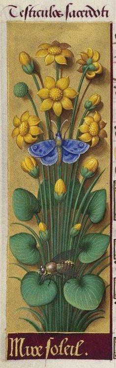 Jean Bourdichon, Grandes Heures d'Anne de Bretagne, 1503-1508 (BnF, Paris, Ms. lat. 9474, f. 134v)