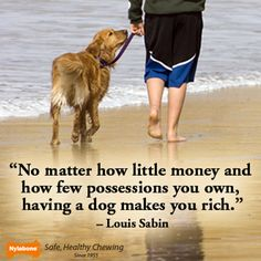 """No matter how little money and how few possessions you own, having a dog makes you rich.""  ~Louis Sabin"