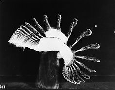 Harold Edgerton (United States, 1907 - 1990)  Lacrosse, 1939, printed later  Photograph, Gelatin-silver print, Unframed: 8 x 10 in. (20.32 x 25.4 cm)  Gift of the Harold and Esther Edgerton Family Foundation (AC1996.119.29)  Photography Department. LACMA