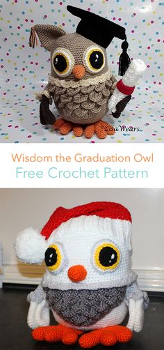 Wisdom the Graduation Owl Free Crochet Pattern #crochet #crafts #owl #toy #homedecor #home #handmade #baby #homemade
