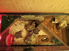 Hamster Cage by Ginseng29, via Flickr
