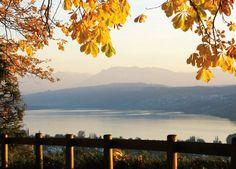Hotel Restaurant Eichberg, Herbst, Seengen, Hallwilersee, Seetal, Aargau, Suisse, Schweiz, Switzerland. www.vch.ch/eichberg/