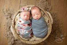 Newborn ( Studio ) Twin Dragonflies Photography - List of the most beautiful baby products Twin Baby Photos, Newborn Baby Photos, Newborn Twins, Newborn Pictures, Newborns, Newborn Twin Photography, Newborn Photographer, Family Photography, Twin Baby Girls