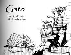 Memes, Movie Posters, Google, Celtic Tattoos, Gatos, Animales, Drawings, Art, Meme