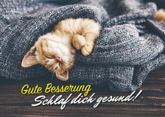 Schlaf dich gesund | Gute Besserung | Echte Postkarten online versenden | MyPostcard.com