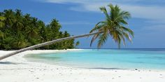 Bharatpur Beach, Neil Island...Very beautiful beach to go...It is another popular beach in Andaman that is famed for coral viewing.