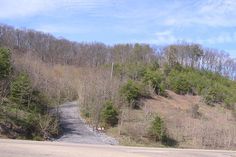 Our local hike - Rogersville, TN - town knob. When You Leave, Mountaineering, Knob, Hiking, Country Roads, City, Pictures, Walks, Photos