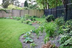 Lush green planting in both beds