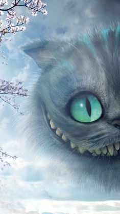 Cheshire cat wallpaper, cheshire cat drawing, cheshire cat alice in wonderland, alicia wonderland Cute Wallpapers, Wallpaper Backgrounds, Iphone Wallpaper, Alice And Wonderland Quotes, Adventures In Wonderland, Wonderland Party, Images Disney, Disney Art, Cheshire Cat Wallpaper