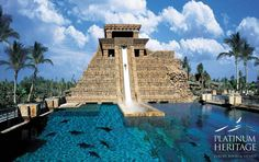 Free information and advice about Atlantis Bahamas vacations. Great rates on the Atlantis Paradise Island Resort in Nassau, Bahamas. Atlantis Bahamas, Les Bahamas, Nassau Bahamas, Vacation Destinations, Dream Vacations, Vacation Spots, Paradise Island, Places To Travel, Places To See