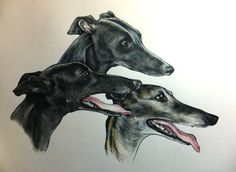 Greyhounds Custom pet art by Jim Griffiths https://www.etsy.com/shop/JimGriffithsArt?ref=hdr_shop_menu