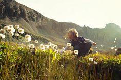 5 Colorado wildflower hikes