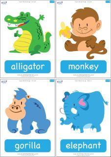 """Set of 38 animal flashcards to go with the """"Super Simple Songs - Animals"""" CD. Great for introducing vocabulary and playing games. #preK #Kindergarten #ESL"""