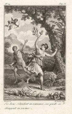 """Bibliothèque de Valenciennes, """"Apollon et Daphné"""", Les Métamorphoses d'Ovide, éd. 1806"""