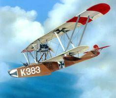 1918 Hansa Brandenburg W13 - Robert Karr - Windsock