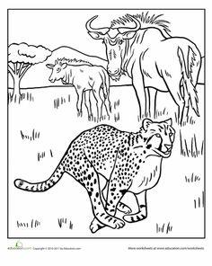 African animals #habitat #biome #savanna colouring page