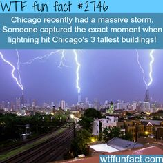 Lightning hits the tallest three building in chicago at the same time - WTF fun facts Wtf Fun Facts, True Facts, Funny Facts, Random Facts, Crazy Facts, Strange Facts, The More You Know, Good To Know, Did You Know