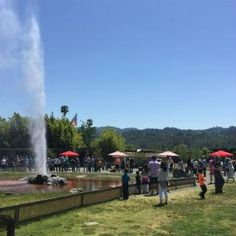 Old Faithful Geyser of California | Discover all things #NapaValley at NapaValley.com