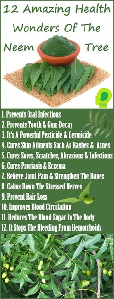 neem tree speech Neem tree farms all natural face serum neem tree farms neem oil and aloe vera soap neem tree farms spray for people and pets and is protected under free speech.