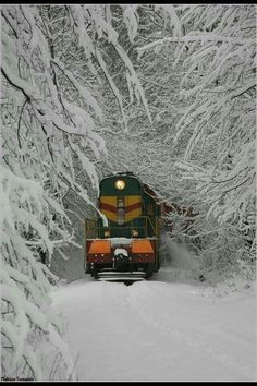 I have actually been on a train in conditions like that. In about going from NYC to Portsmouth, NH by train we hit a blizzard and the train had to stop. We were out in the forest until late the next day when a rescue train came. Winter Szenen, Winter Magic, Winter Time, Winter Travel, Winter Fairy, Train Pictures, Cool Pictures, Funny Pictures, Locomotive