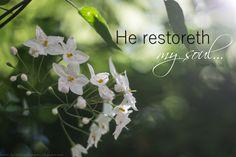 He restoreth my soul . . . Ps. 23:3a