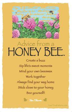 Spirit Totem Animals:  #Advice from a #Honey #Bee.