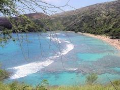 Snorkeled Haunauma Bay, Oahu, Hawaii