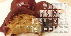 Vegan Recipe   Animal Crackers   Vegan Dessert   Typography   Chocolate Truffles