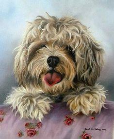 16- Animaux peints par Sarah Stribbling