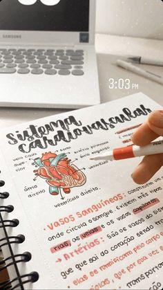 Bullet Journal Lettering Ideas, Bullet Journal Notes, Bullet Journal Writing, Bullet Journal School, Bullet Journal Ideas Pages, School Organization Notes, Study Organization, Class Notes, School Notes