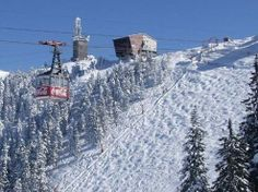Romania Ski Destination: Poiana, Brasov Snowboarding, Skiing, Carpathian Mountains, Ski Holidays, Pine Forest, Medieval Town, Europe Destinations, Holiday Travel, Paths