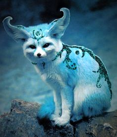 This is digital art. It is beautiful. It is done by 12tailed-Shadow-Fox. This is a Fennec Fox Spirit.   The Incensewoman